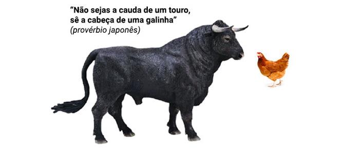 """""""Não sejas a cauda de um touro, sê a cabeça de uma galinha"""" (provérbio japonês)"""